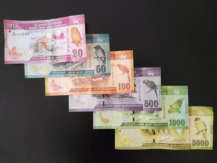 スリランカナビ|コロンボ不動産 スリランカでは100ルピー札をたくさん ...